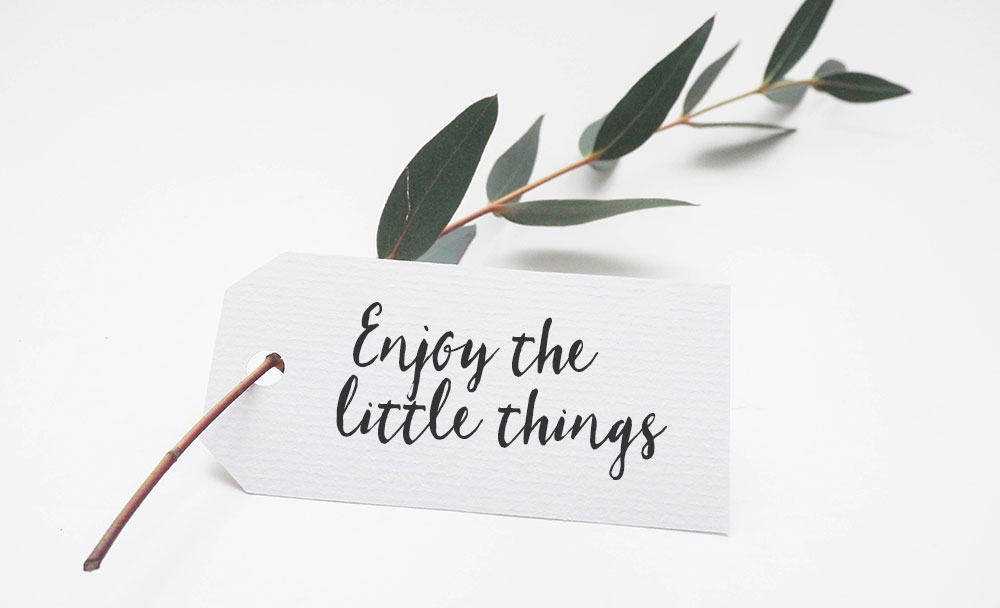 enjoy the little things image